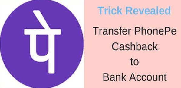transfer phonepe cashback